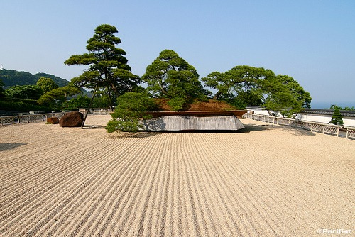 The World's Biggest Bonsai Tree - from the 15 Best Bonsai Trees (http://lawrencerspencer.com/2011/05/23/15-best-bonsai-trees/)